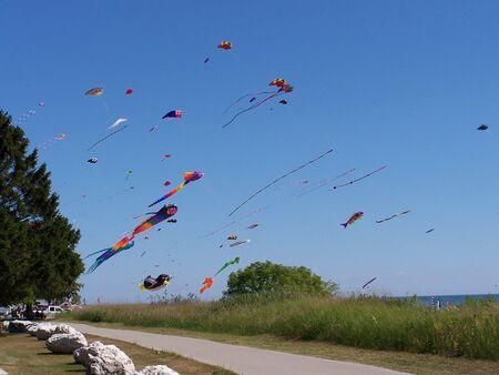 Kite Fest photo