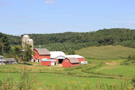 homestead: Rural Farm