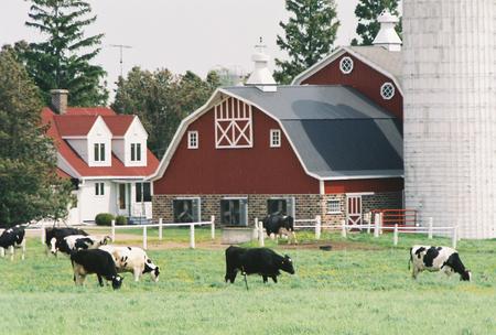 Picture Perfect Farm Stock Photo