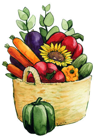 Vegetables in the basket, watercolor illustration 스톡 콘텐츠