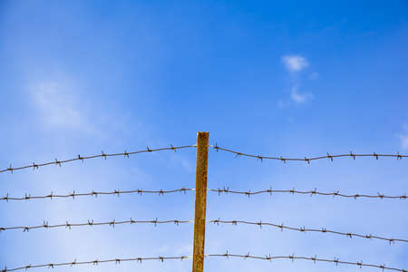 arrestment: Barbed wire on a background of blue sky
