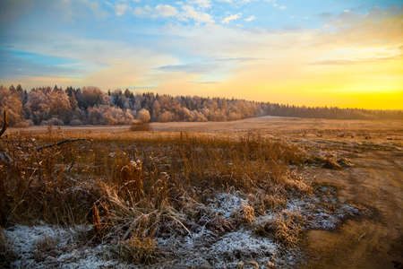 scenic autumn landscape at sunset, field, forest and dry grass photo