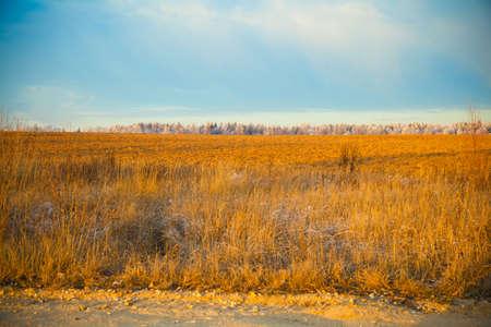 Herbst Landschaft bei Sonnenuntergang, ein Feld mit einem trockenen Gras Lizenzfreie Bilder