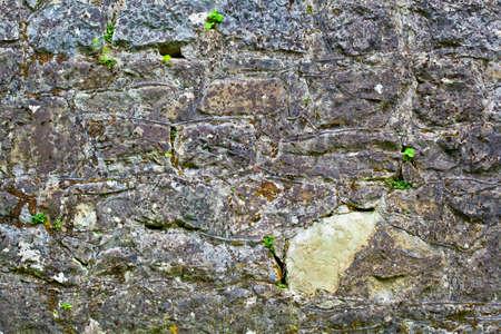 Hintergrund der Steinmauer Textur