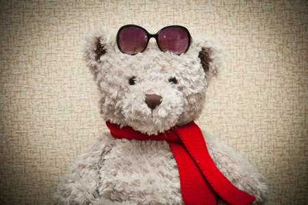 Teddy in einen roten Schal und eine Sonnenbrille tragen Lizenzfreie Bilder