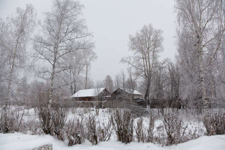 Winter countryside rural landscape. Village houses, bare trees, snow-covered terrain