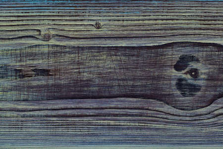 The texture of the wood. Blank background. Wooden Board, a cross-section of wood with knots, a cross-section of wood with knots
