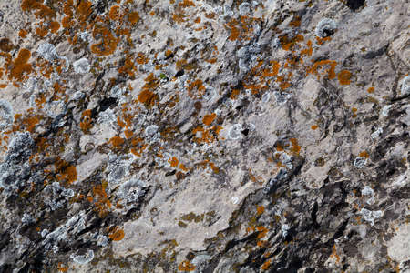 the texture of the mountain surface. natural background. The texture is rough rough stone closeup