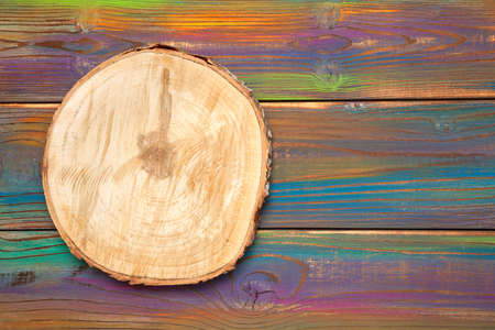 wood slice cross section. Saw cut wood on a beautiful multicolored wood background. Background, wood texture, free space for creativity Stock Photo