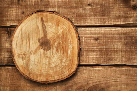 Background, wood texture, free space for creativity. Circular saw cut wood. wood slice cross section Stock Photo