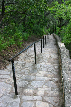 Stone staircase leading down in the woods