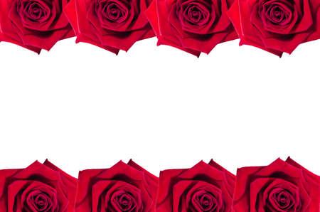 rose frame: Horizontal rose frame Stock Photo