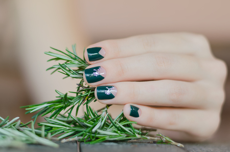 Rosemary in female hand with beautiful dark green nail design