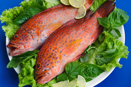 Two grouper fish with lime on grill