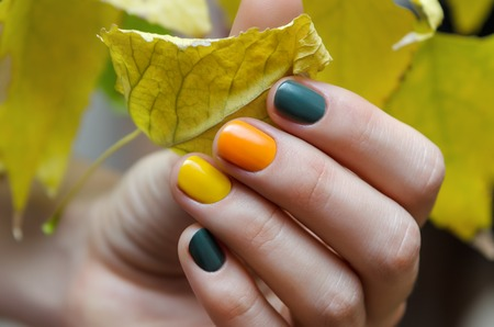 Female hands with color nail design holding yellow leaf.