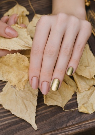 Female hands with gold chameleon nail design holding fallen leaves. 免版税图像