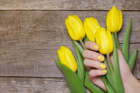 Female hands with yellow nails holding yellow tulips.
