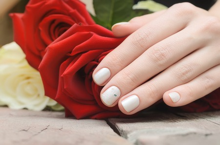 Female hands with white nail design holding red rose. Stock fotó