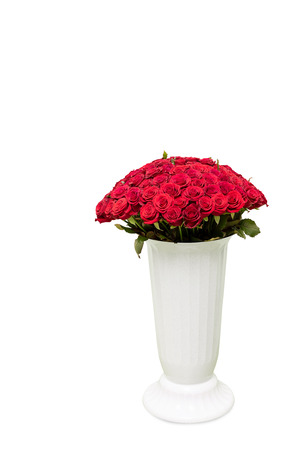 Bouquet of red roses in big vase on white background.