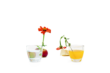 Concept of healthy vs unhealthy food on white background