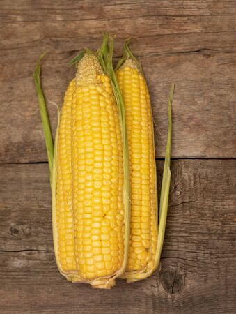 Fresh corn on cobs on wooden background