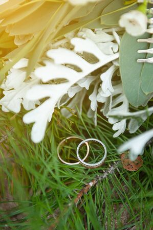 Wedding rings on a green spruce branch.