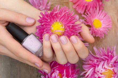 Female hand with pink glitter nail design holding pink flower. Reklamní fotografie
