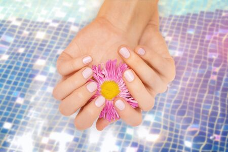 Female hands holding a pink flower on water surface background