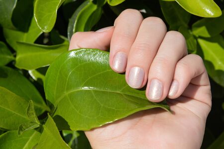 Female hand with glitter nail design holding green leaf