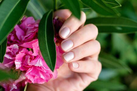 Female hand with glitter nail design holding pink flower.