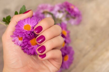 Female hand with pink nail design holding pink flower.