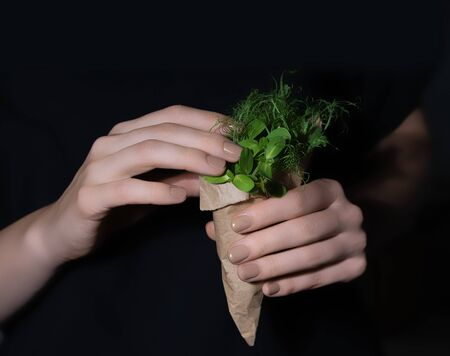 Woman hands holding paper package full of fresh sunflower and peas microgreens sprouts. Imagens