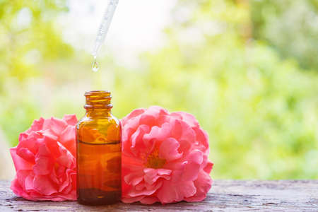Rose medical essential oil use. Rose plant herbs on wooden desk. Rose essential oil on floral background.