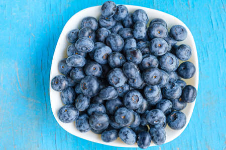 Blueberry in a white plate. Raw berries close up in white dish. Blueberry bowl on blue background