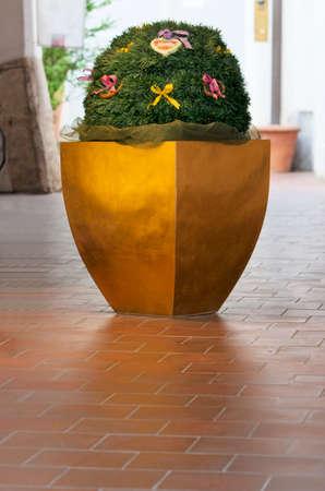 big flower: Plant in a big flower pot.Big decorative vase with Oktoberfest decoration. Munich,Bavaria,Germany