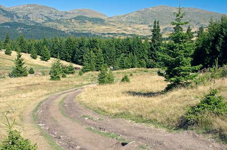 highlands: Mountain road in highlands