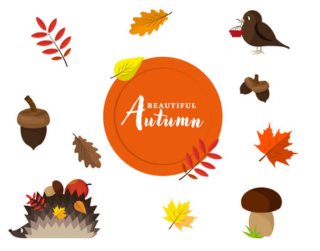Set of autumn vector isolated elements. Autumn icon and objects set for design. Autumn leaf of oak acorn, maple or elm and rowan with berry and mushroom, hedgehog, sparrow bird. Use for September autumnal sale promo poster, leaflet or web banner.
