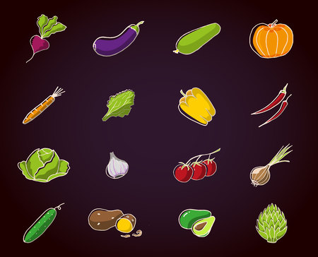 Set of fresh seasonal vegetables on dark background with white stroke. Eggplant, pepper, radish, zucchini, pumpkin, carrot, lettuce, bow garlic tomatoes cucumber potato and cabbage sketch in color