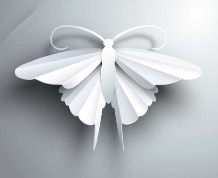 abstract butterfly: Beautiful white3D paper butterfly   Illustration