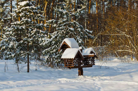 Bird feeder in the park covered with snow Stock Photo - 17466909
