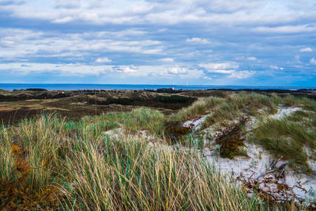 Scenic view of sand dunes by the coast with the sea in the background, Hvinde Sande, Denmark. photo