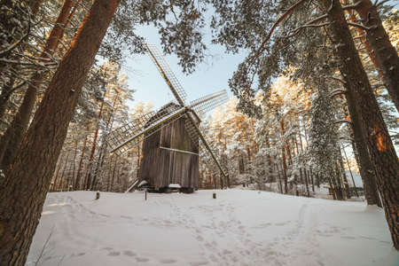crone: Old wooden windmill in forest in winter
