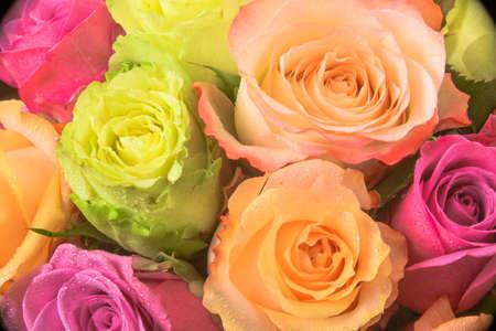 構造化されたパターンとしてバラ色とりどりの花束