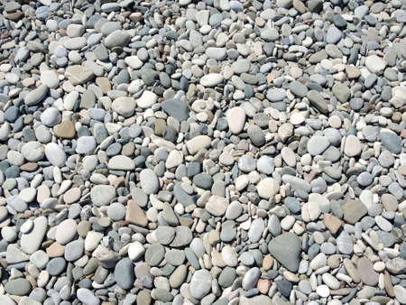 roundish: Pebble on the sea coast