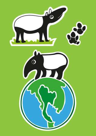 Malayan tapir in thailand  Illustration