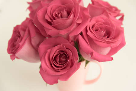 Bouquet of pink roses on a light background. A bouquet of flowers stands in a pink mug. Pink vase. Stylish bouquet.