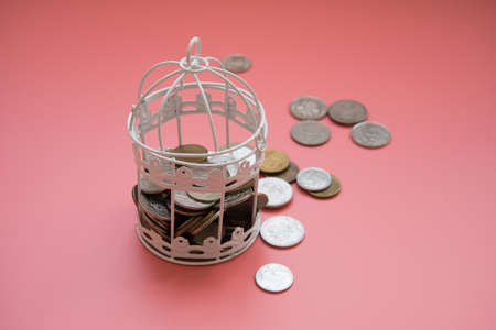 The door of the birdcage is open. The money broke free. The concept of investing money. The concept of losing money. Financial literacy. To lose the attachments. Bankruptcy