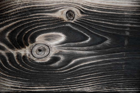 Burnt wood, close-up textured image. Background, texture. Natural patterns. Archivio Fotografico