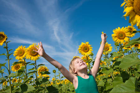 A happy child basks in the sun in a field of sunflowers. The child is as blond as a sunflower. Bright blue sky and space for text. The concept of summer, sun, village, rest and happiness.