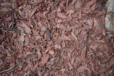 Wood chips. Tree bark elements. Natural coating, environmental friendliness. Wood processing. Reuse Stok Fotoğraf